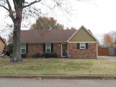 Olive Branch Single Family Home For Sale: 10218 Stephenson Lane