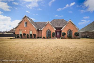 Hernando Single Family Home For Sale: 72 McKinzie Cove