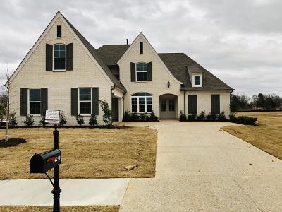 Olive Branch Single Family Home For Sale: 4250 John Joseph Drive