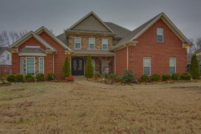 Olive Branch Single Family Home For Sale: 9596 Austin Drive