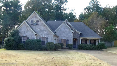 Olive Branch Single Family Home For Sale: 9628 Taylor Drive