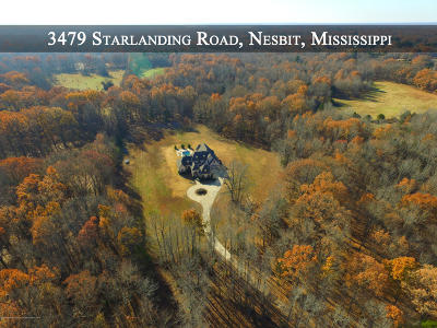 Desoto County Single Family Home For Sale: 3479 Starlanding Road