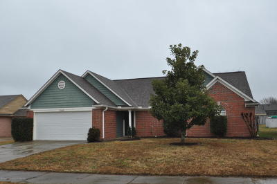 Olive Branch Single Family Home For Sale: 10664 N Oak Circle
