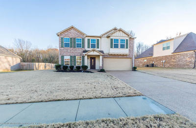 Olive Branch Single Family Home For Sale: 6291 Vera Lane