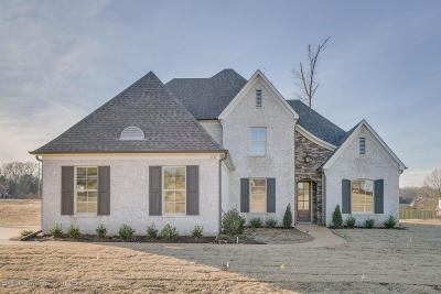 Southaven Single Family Home For Sale: 3722 Beech Tree Cove