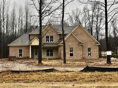 Southaven Single Family Home For Sale: 5405 Tchulahoma Road