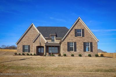 Hernando Single Family Home For Sale: 3199 McKenna Way
