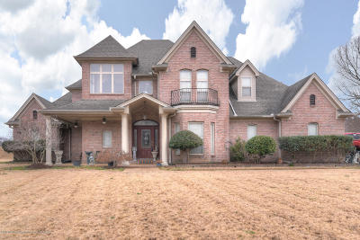 Olive Branch Single Family Home For Sale: 8206 Westbrook Drive