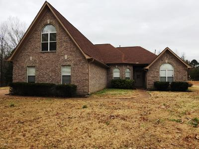 Horn Lake MS Single Family Home For Sale: $230,000