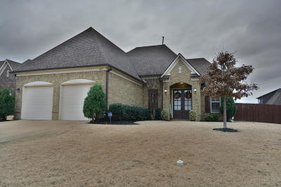Olive Branch Single Family Home For Sale: 7077 Carriebrook Drive