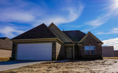 Horn Lake Single Family Home For Sale: 3938 Union Avenue