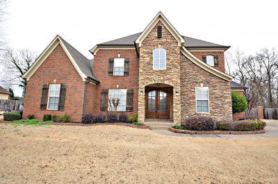 Desoto County Single Family Home For Sale: 4066 Kayley Lane