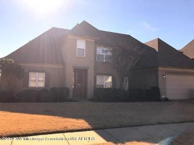 Southaven Single Family Home For Sale: 2933 S Cherry Drive