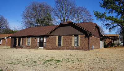 Southaven Single Family Home For Sale: 8238 Greenbrook Parkway
