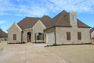 Desoto County Single Family Home For Sale: 3614 E Enclave Drive