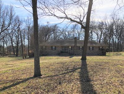 Desoto County Single Family Home For Sale: 4635 Pecan Avenue