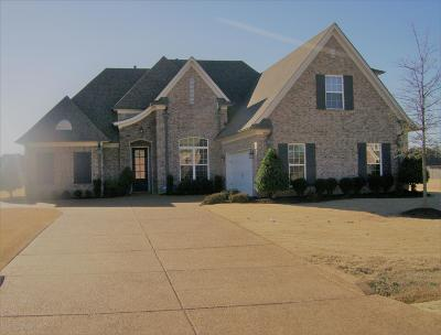 Desoto County Single Family Home For Sale: 4809 Shinault Lane
