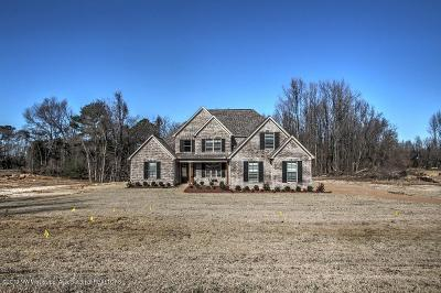 Desoto County Single Family Home For Sale: 746 Vinson Road