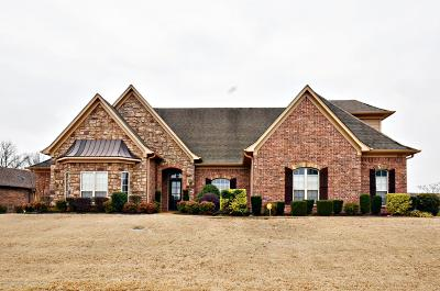 Desoto County Single Family Home For Sale: 4941 Bakersfield Drive