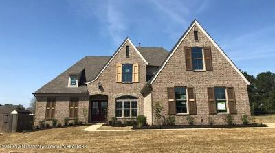 Desoto County Single Family Home For Sale: 13203 Willow Nest Drive