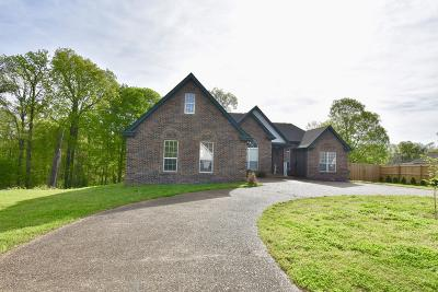 Desoto County Single Family Home For Sale: 200 American River Drive