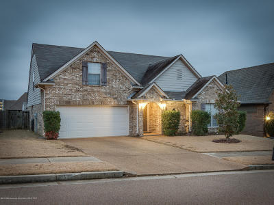 Desoto County Single Family Home For Sale: 4238 Ritchie Drive