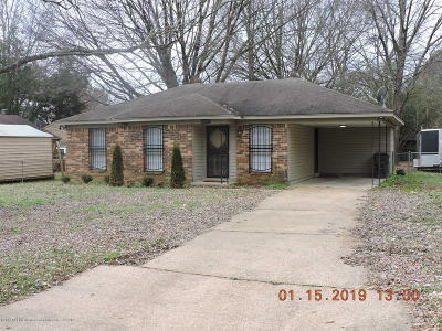Southaven Single Family Home For Sale: 8029 Cedarbrook Drive