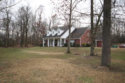 Desoto County Single Family Home For Sale: 1355 Spike Cove