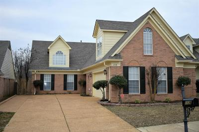Southaven Single Family Home For Sale: 1138 Warwick Place