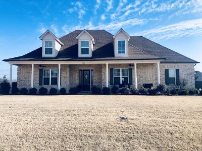 Desoto County Single Family Home For Sale: 3850 Marcia Louise Drive