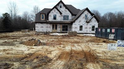 Desoto County Single Family Home For Sale: 11310 Cedar Point Cove