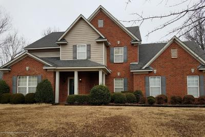 Desoto County Single Family Home For Sale: 1528 Monty's Circle