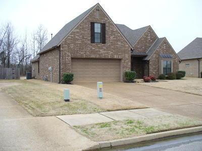 Desoto County Single Family Home For Sale: 4949 W Trinity Park Drive