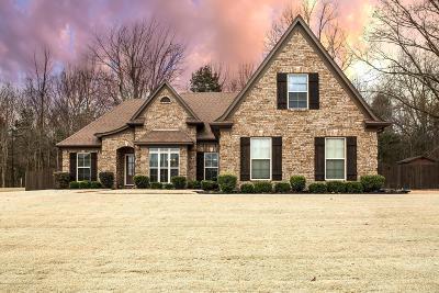 Desoto County Single Family Home For Sale: 3887 Glenda Gail Street