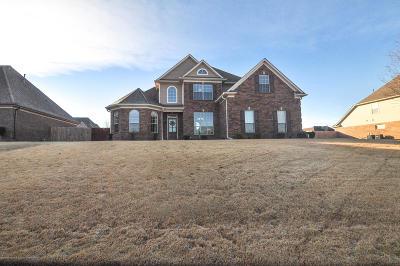 Hernando MS Single Family Home For Sale: $245,000