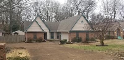 Southaven Single Family Home For Sale: 1195 Haleville
