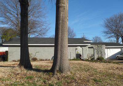 Southaven Single Family Home For Sale: 970 Boulder Cove