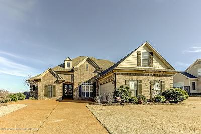 Hernando MS Single Family Home For Sale: $269,900