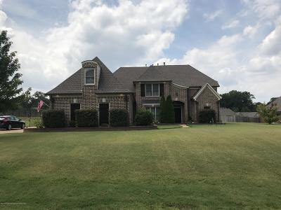 Olive Branch MS Single Family Home For Sale: $320,000