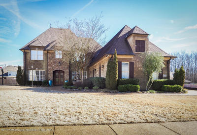 Olive Branch Single Family Home For Sale: 6200 Sierra Drive