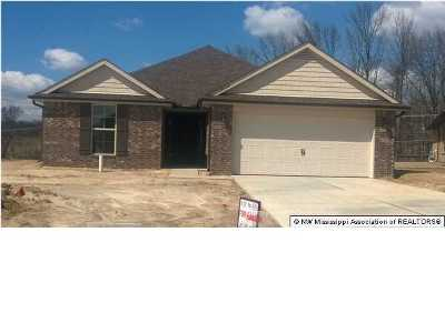 Southaven Single Family Home For Sale: 8742 Kimberly Dawn Drive