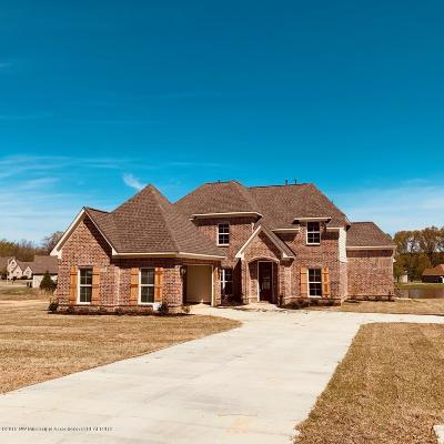 Southaven Single Family Home For Sale: 3652 Bailey Lane