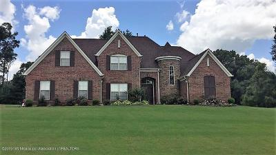Southaven Single Family Home For Sale: 1391 S Houston Loop