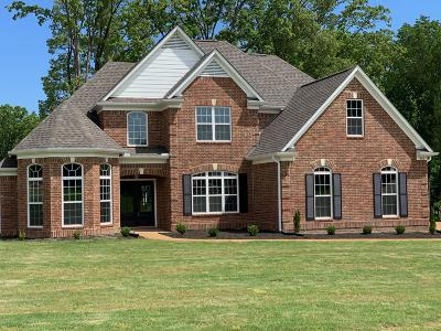 Southaven Single Family Home For Sale: 480 Chase Cove