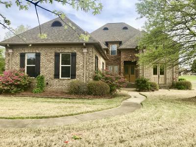 Southaven Single Family Home For Sale: 514 Swinnea Lake Drive