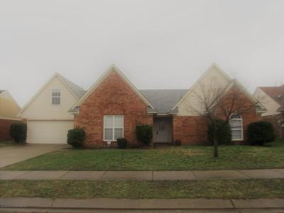 Southaven Single Family Home For Sale: 1864 Cherry Creek Drive