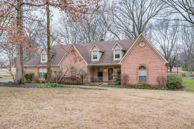 Olive Branch Single Family Home For Sale: 3880 Mary Jane Drive