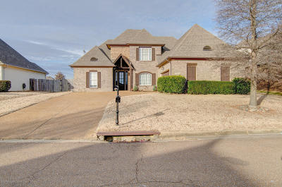 Southaven Single Family Home For Sale: 2912 Ainsworth Lane