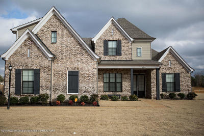 Olive Branch Single Family Home For Sale: 6598 Payne Lane