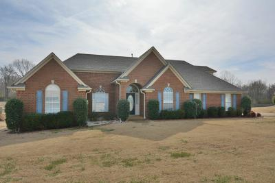 Olive Branch Single Family Home For Sale: 5659 Paloma Drive